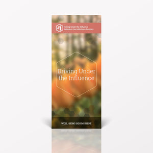 Driving Under the Influence pamphlet/brochure (6017S1)
