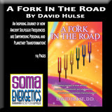 A Fork In The Road Book by David Hulse - SomaEnergetics Sound Tools & Training