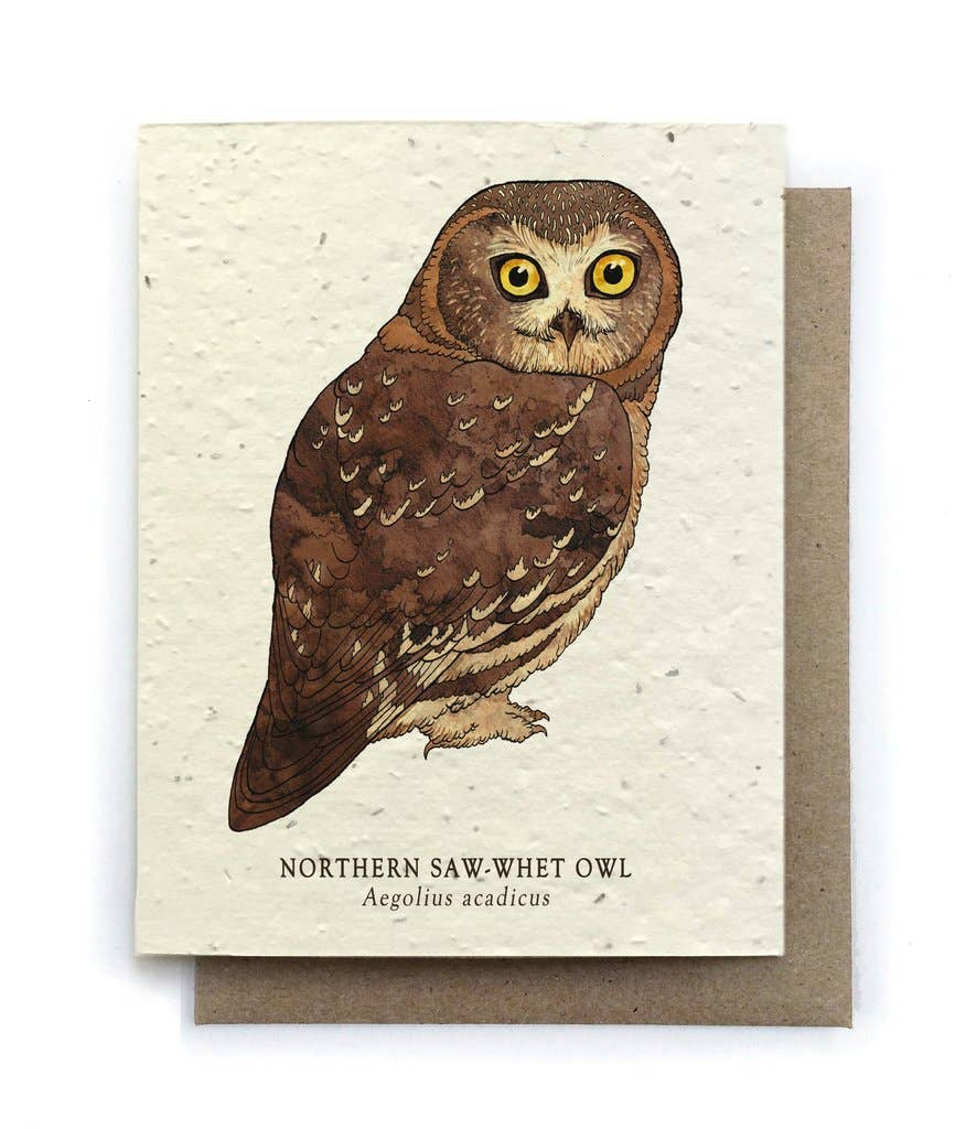 The Bower Studio - Owl Bird Greeting Cards - Plantable Seed Paper