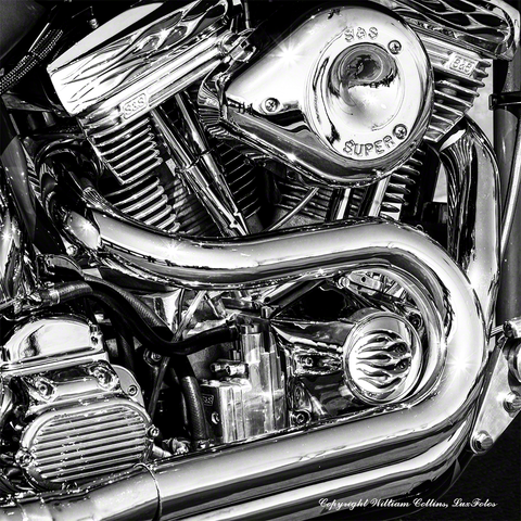 V twin 16 x 16 20 x 20 black and white prints