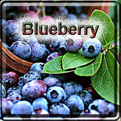 BlueBerry - The Vapor Girl - eliquid / e juice