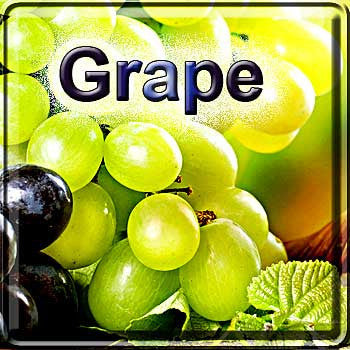 Grape! - The Vapor Girl - eliquid / e juice