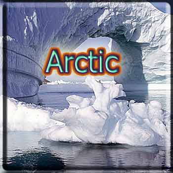 Arctic Tobacco - The Vapor Girl - eliquid / e juice