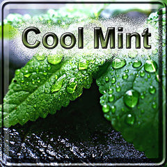 Cool Mint - The Vapor Girl - eliquid / e juice