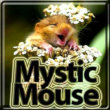 Mystic Mouse - The Vapor Girl - eliquid / e juice