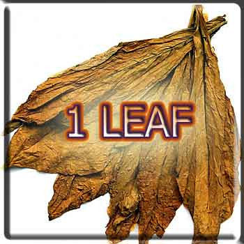 1 Leaf Tobacco