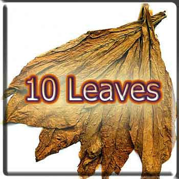10 Leaves Tobacco