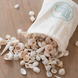 White Sands Seashell Mix