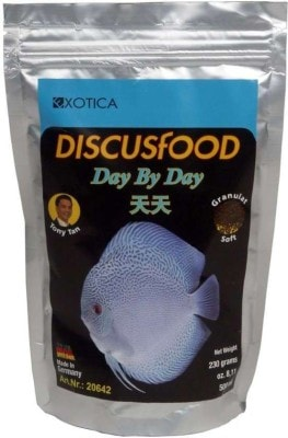 Exotica Discus Food Day-By-Day
