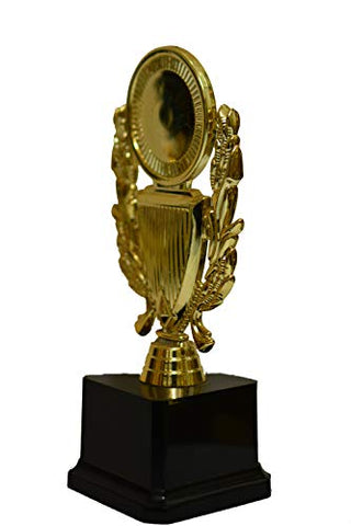 JUPITER INDUSTRIES Victorious Cricketer Trophy for Crickets Sports Person Events OCASSIONS - 43