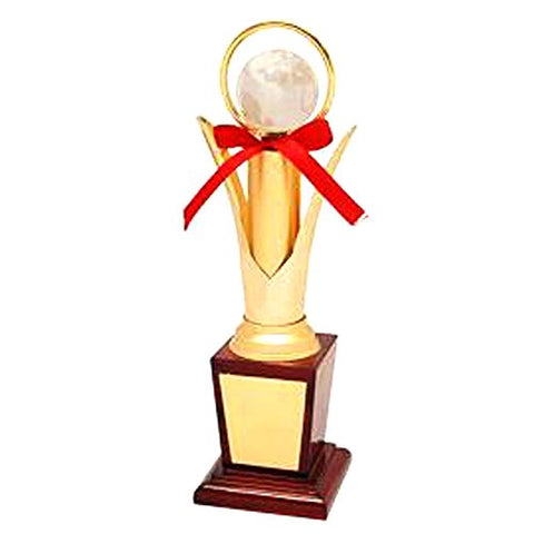 "Golden Moment Group Wooden Superior Quality Trophy (12"")"