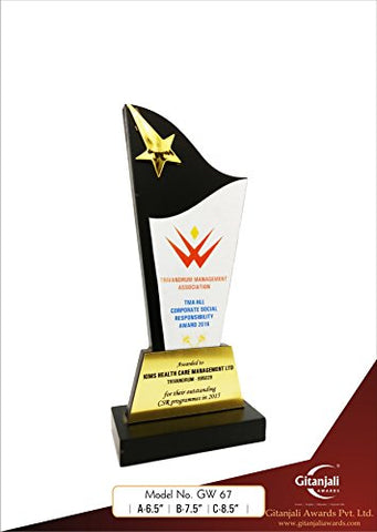 Shooting Star on Pillar Customizable Wooden Award