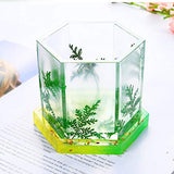 Homyl Clear Silicone Mold Hexagon Mould for DIY Jewelry Coaster, Decorative Crafts Making Supplies for Home, Party Decor