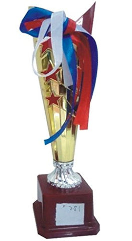 Qadri Trophy House Metallic Fiber Trophy (103CS_13.5 Inch)