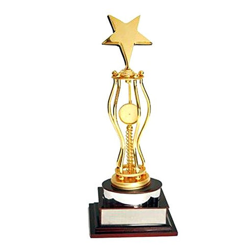 "Golden Moment Group Wooden Superior Quality Trophy (17.5"")"