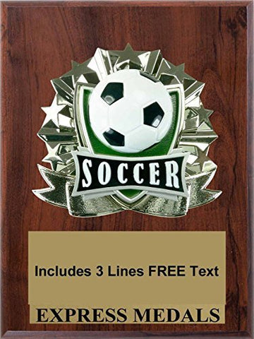 Soccer Plaque Trophy Award