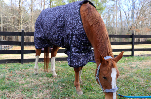 """Black w/ Horse Shoes"" Medium Weight Turnout Blanket"