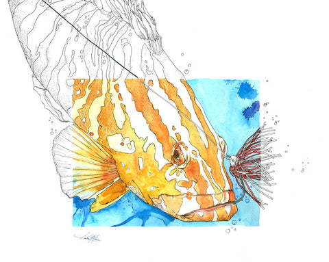 Greeting Card - Grouper and Lure - Single - Greeting Card - Amber M. Moran - 2