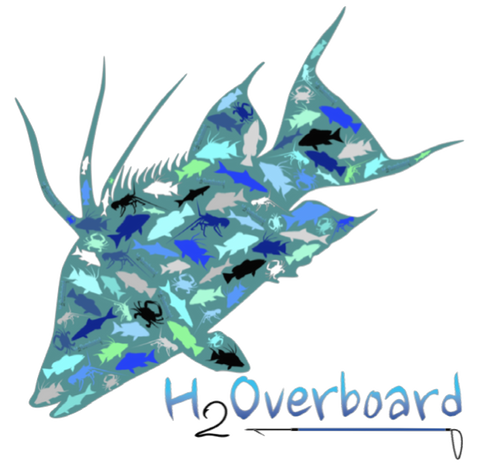 Hogfish Transfer Sticker