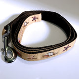 Leash - 1 inch webbing