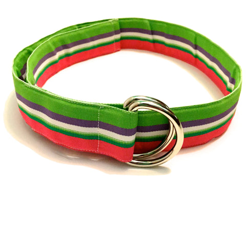 Watermelon Squeeze Ribbon Belt - X-Small - Belt - H2Overboard