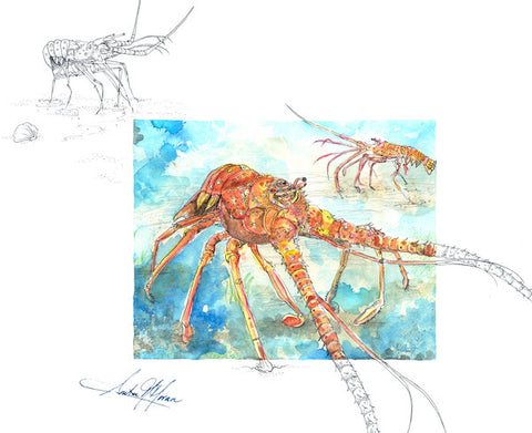 Greeting Card - Reaching Lobster - Single - Greeting Card - Amber M. Moran - 2