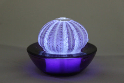 Violet Sea Urchin Flameless Sealight Candle