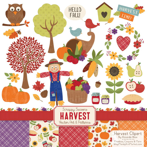 Harvest Clipart & Digital Papers in Natural by Amanda Ilkov - Mandy Art Market - 1