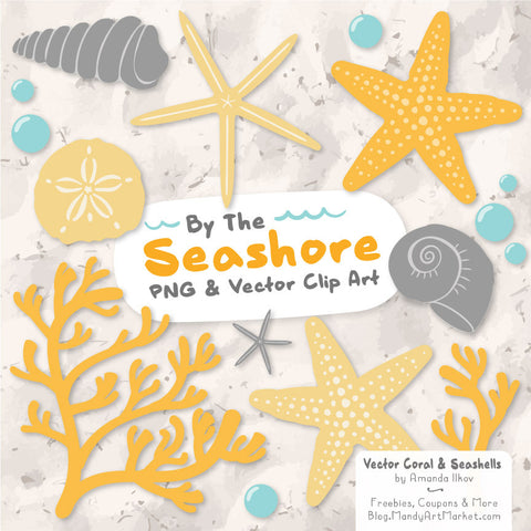 Seashells Clipart in Sunshine by Amanda Ilkov - Mandy Art Market - 1