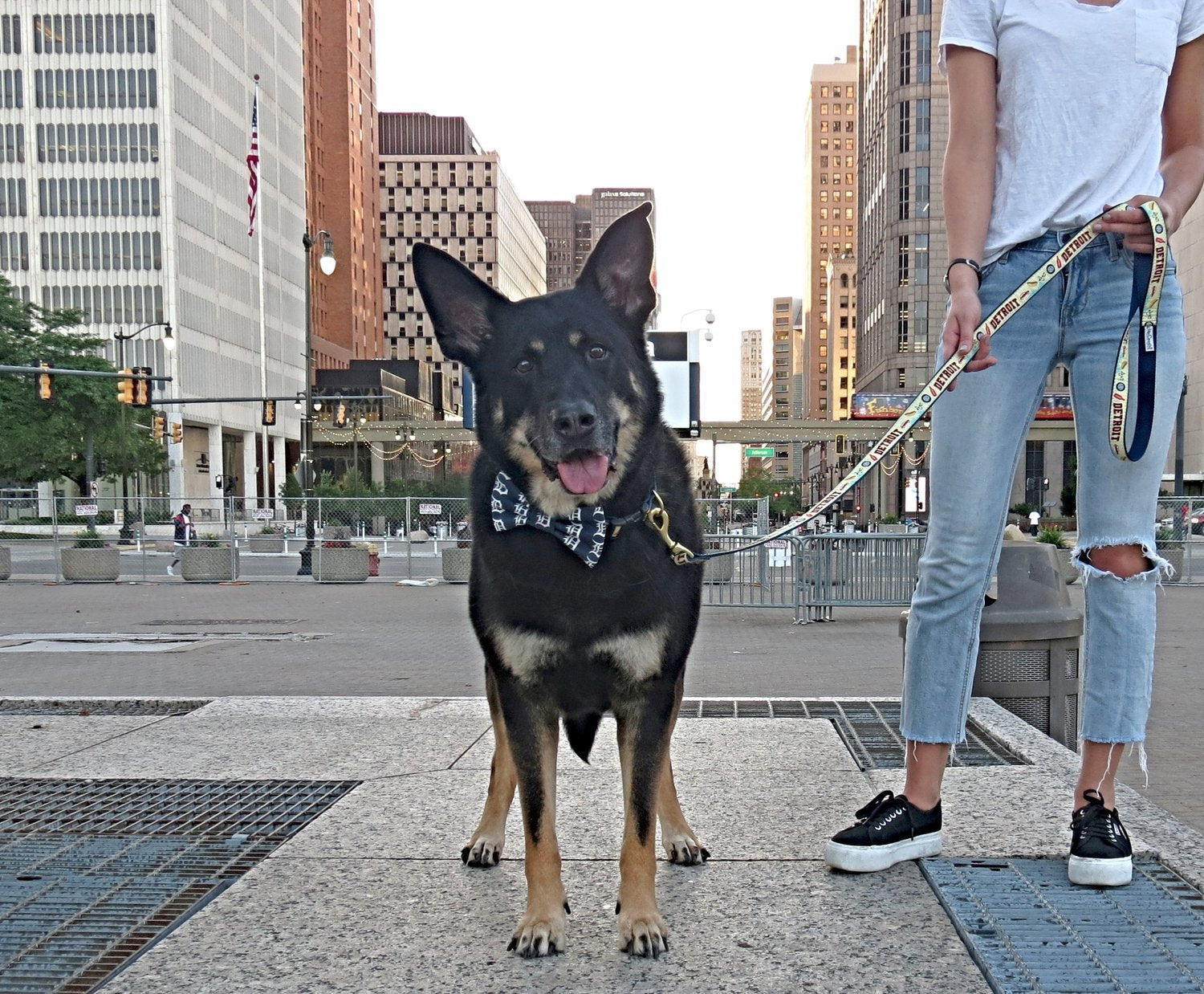 German Shepherd in Eastern Market