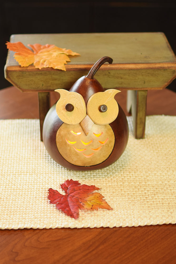 Oliver Owl Gourd - Available in Multiple Sizes