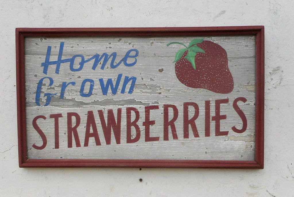 Home Grown Strawberries with Painted Strawberry White with Red Trim Americana Art