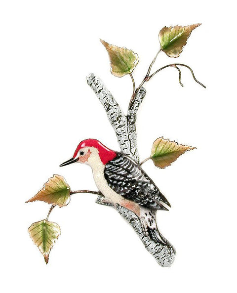 Red-Bellied Woodpecker on Birch Wall Art by Bovano Cheshire