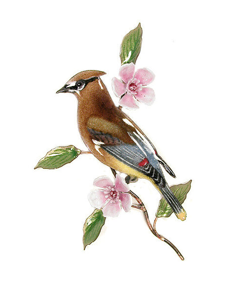 Cedar Waxwing with Cherry Blossom Wall Art by Bovano Cheshire