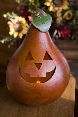 Traditional Jacks Gourd