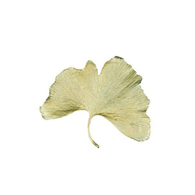 Ginkgo Tack Pin by Michael Michaud