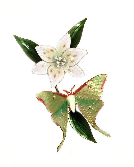 Luna Moth with White Lily Wall Art by Bovano Cheshire
