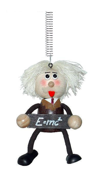 Einstein Handcrafted Wooden Jumpie
