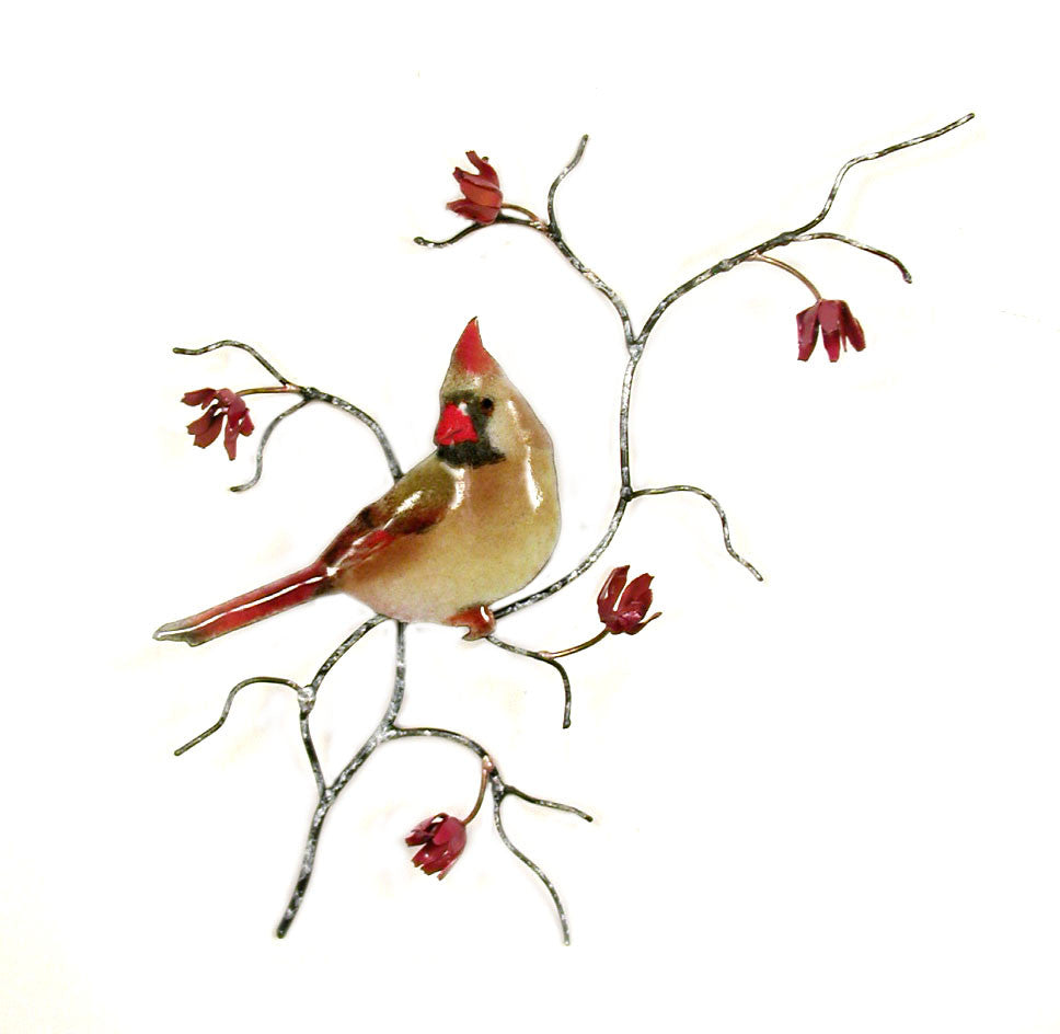 Single Female Cardinal Wall Art by Bovano Cheshire
