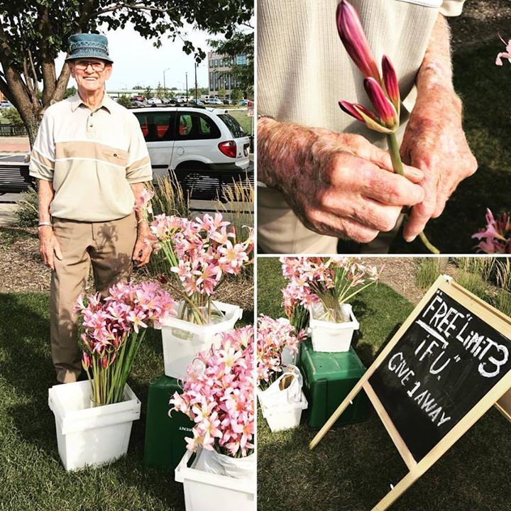 """This cute little older man - I later learned his name was Rich - was offering free flowers - beautiful mauve resurrection lilies"