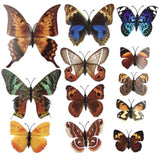house decoration 12 PCS stereo butterflies refrigerator stickers home decor removable 3D wall stickers home decor - Hespirides Gifts - 28