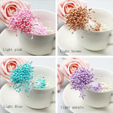 Wholesale Multi Color 3mm (500pcs/lot) Pearl Flower Stamen Floral Stamen For DIY Cake/Wedding Decoration Artificial Flowers - Hespirides Gifts - 1