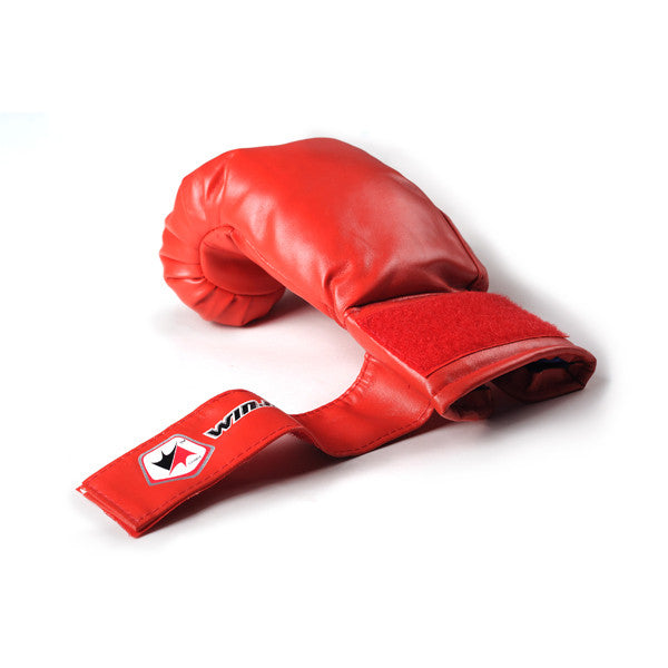 WINMAX New Arrivals Boxing Series with Nice Carry bag Kids Children Teenagers PU Leather 6 oz Boxing Gloves - Hespirides Gifts - 2