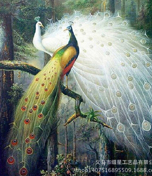 Peacocks Beauty Competition 5D DIY Diamond Painting Cross Stitch Of Diamonds Embroidery Mosaic 65*75cm For Living Bed Room Decor - Hespirides Gifts