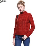 Women 5 Colors Brief Long Sleeve Turtleneck Cable Knitted Sweater Casual Pullover Autumn New Vintage Ribbed Slim Knitwear - Hespirides Gifts - 1