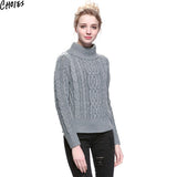 Women 5 Colors Brief Long Sleeve Turtleneck Cable Knitted Sweater Casual Pullover Autumn New Vintage Ribbed Slim Knitwear - Hespirides Gifts - 6