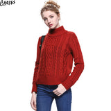 Women 5 Colors Brief Long Sleeve Turtleneck Cable Knitted Sweater Casual Pullover Autumn New Vintage Ribbed Slim Knitwear - Hespirides Gifts - 5