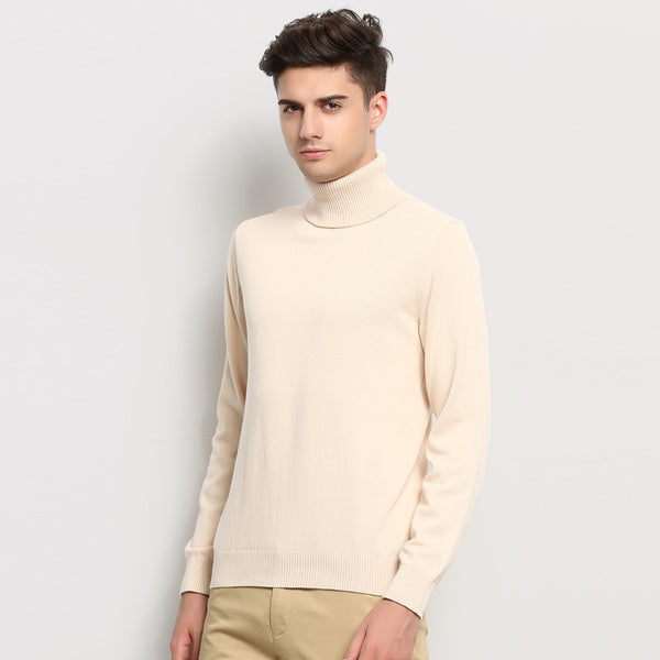 Hot New Autumn Winter Brand Clothing Sweater Men Turtleneck Slim Fit Winter Pullover Men Solid Color Knitted Sweater Men - Hespirides Gifts - 3