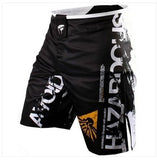 Mens MMA Martial Arts Shorts - Hespirides Gifts - 7