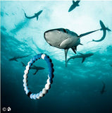New Limited Edition Authentic Shark Lokai bracelet silicone Varied Sizes And Colors - Hespirides Gifts - 18